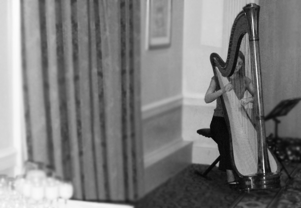 Angel Hotel Cardiff Harpist South Wales