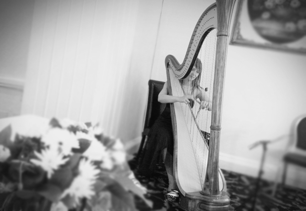 The Bear Hotel Cowbridge Harpist South Wales
