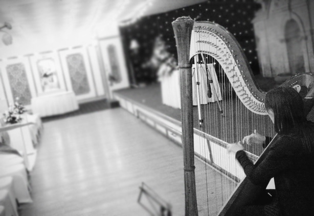 Maes Manor Hotel Caerphilly Harpist South Wales