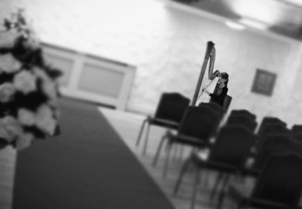 Llancaich Fawr Caerphilly Harpist South Wales
